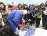 大雪将至,獐子岛海参下周一开采活参150元一斤,预定火爆,有人一下预定1300多斤